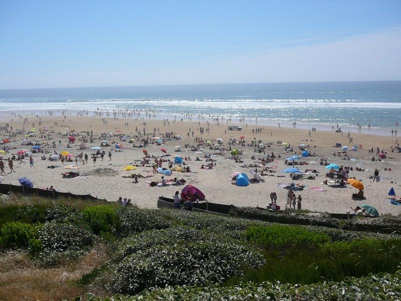 Suivez moi sur la plage de Biscarosse aujourd'hui 00311