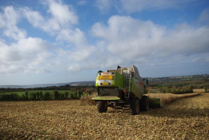 Moissons maïs 2009 Imgp7015