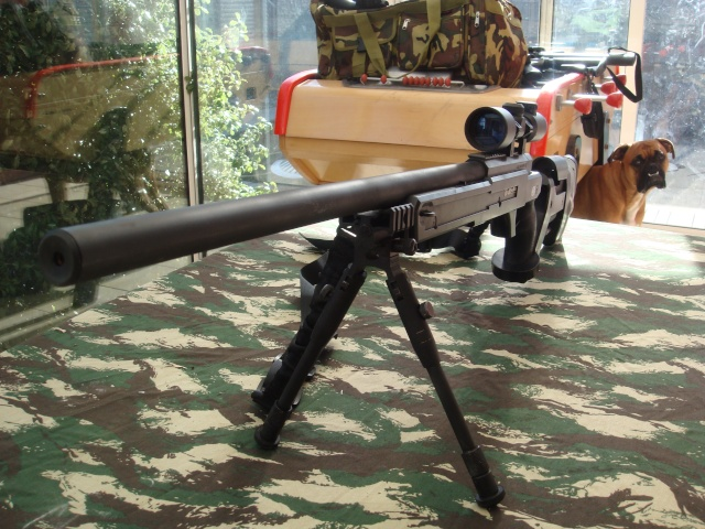 mauser sr pro tactical Dsc01911