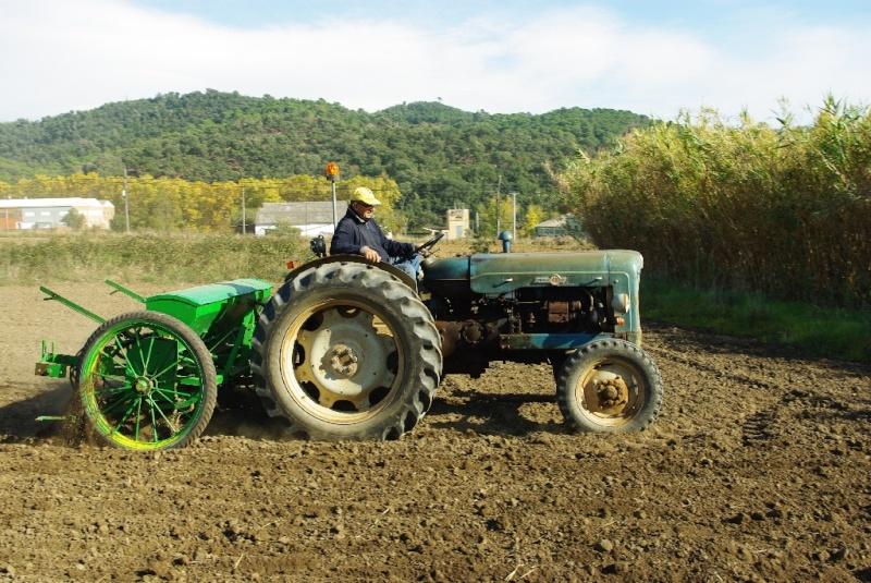 Mi Ebro 48 y sembradora de lineas ex tracción animal. Imgp0133