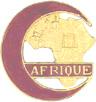 Hommage à tous les Africains et Indochinois qui sont morts pour la France . Insign21