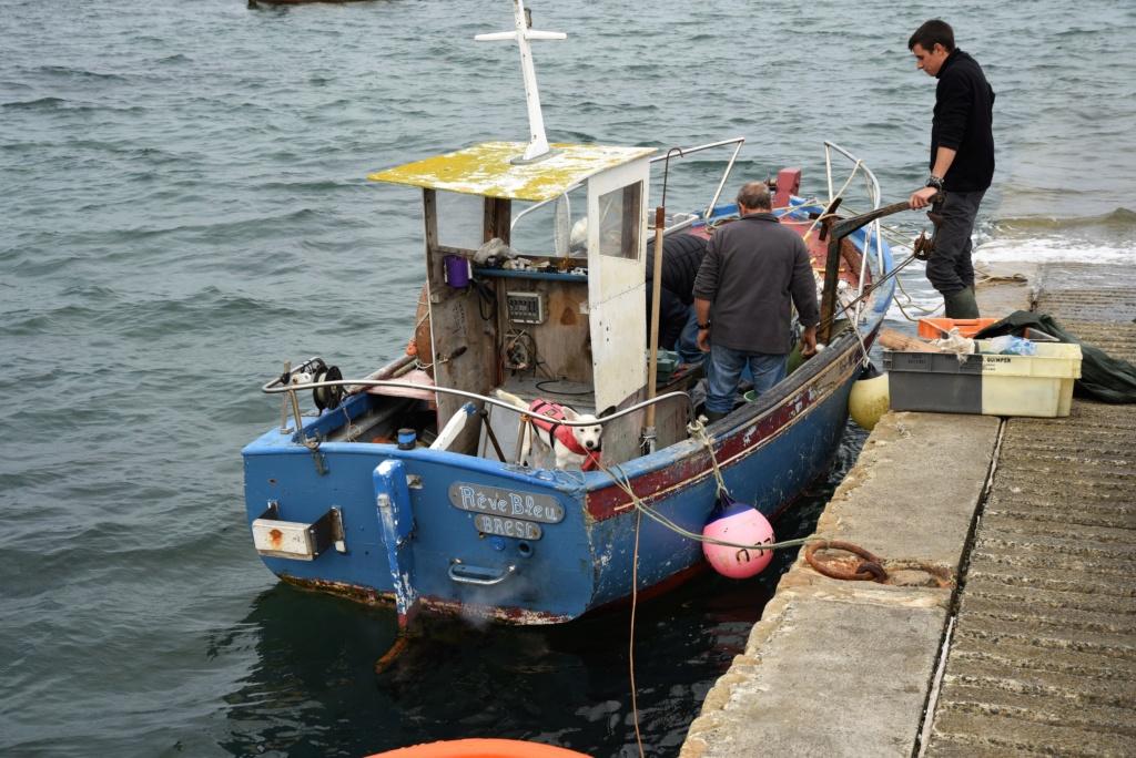 [VIE DES PORTS] Quelques bateaux de pêche (sur nos côtes Françaises) Dsc_4110