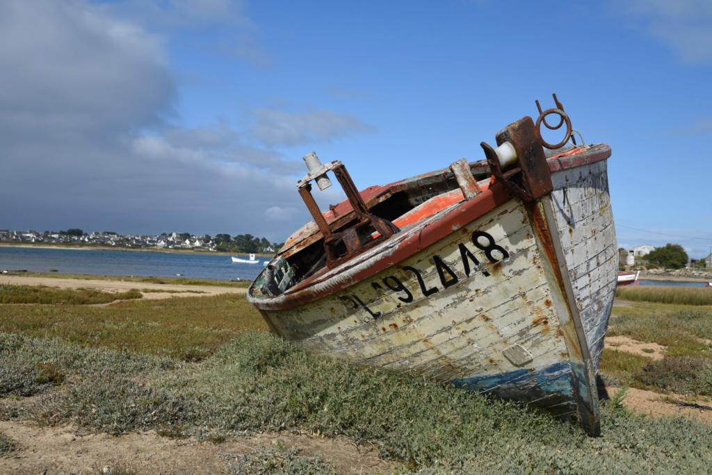[VIE DES PORTS] Quelques bateaux de pêche (sur nos côtes Françaises) Dsc_4310