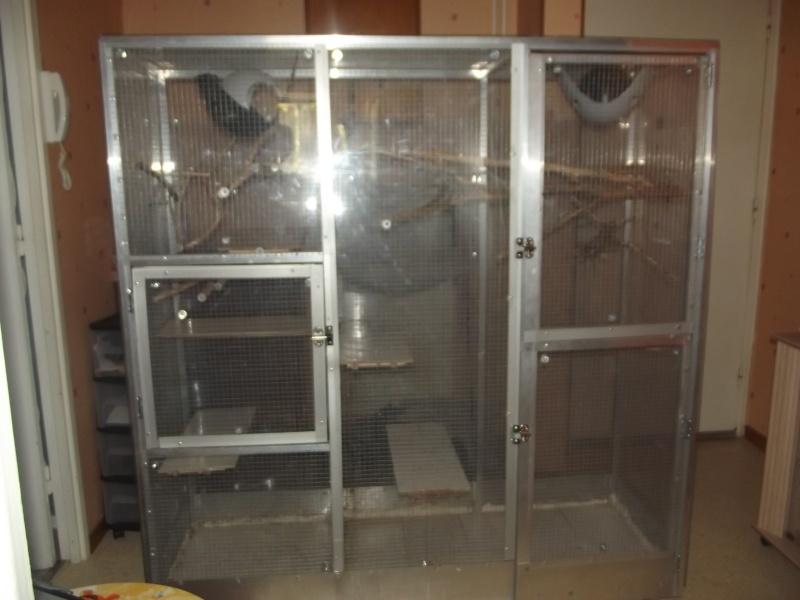 vend tres belle cage fait maison Dscf0810