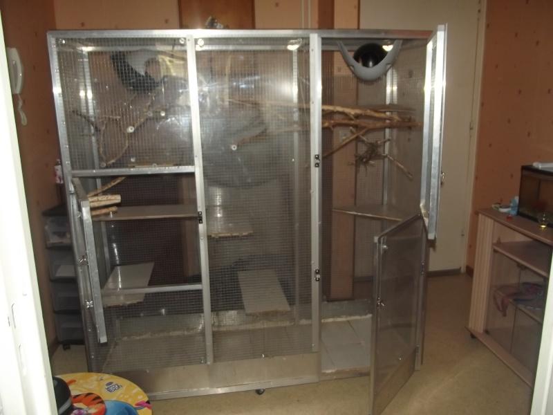 vend tres belle cage fait maison Dscf0812