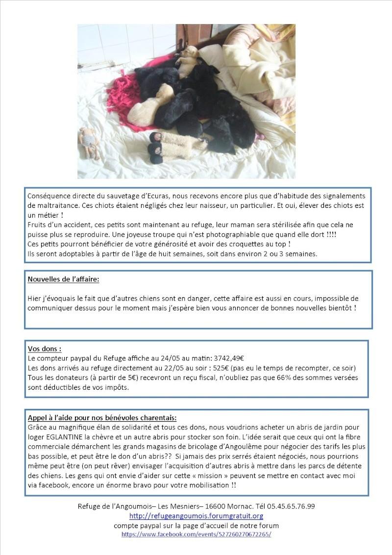 Nouvelles des animaux d'Ecuras du 24 05 13 Nouvel18