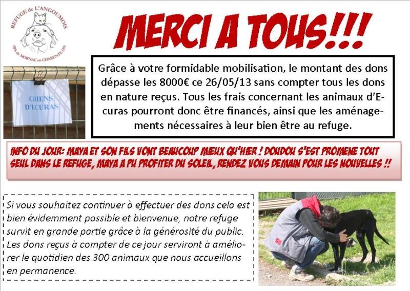 Chiens abandonnés : scène d'horreur à Ecuras (Charente) Nouvel23