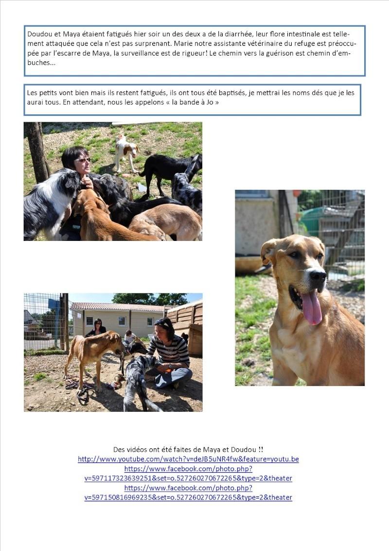 Nouvelles des animaux d'Ecuras du 28 05 13 Nouvel30