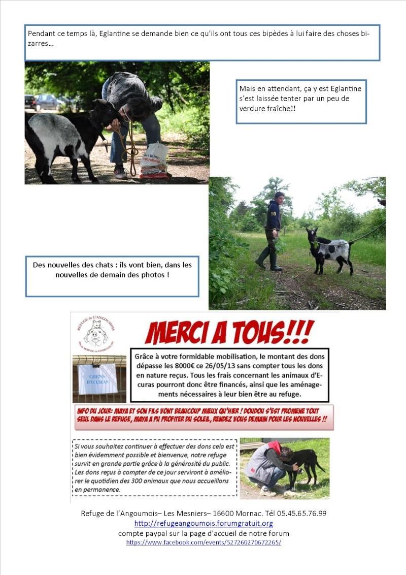 Nouvelles des animaux d'Ecuras du 28 05 13 Nouvel31