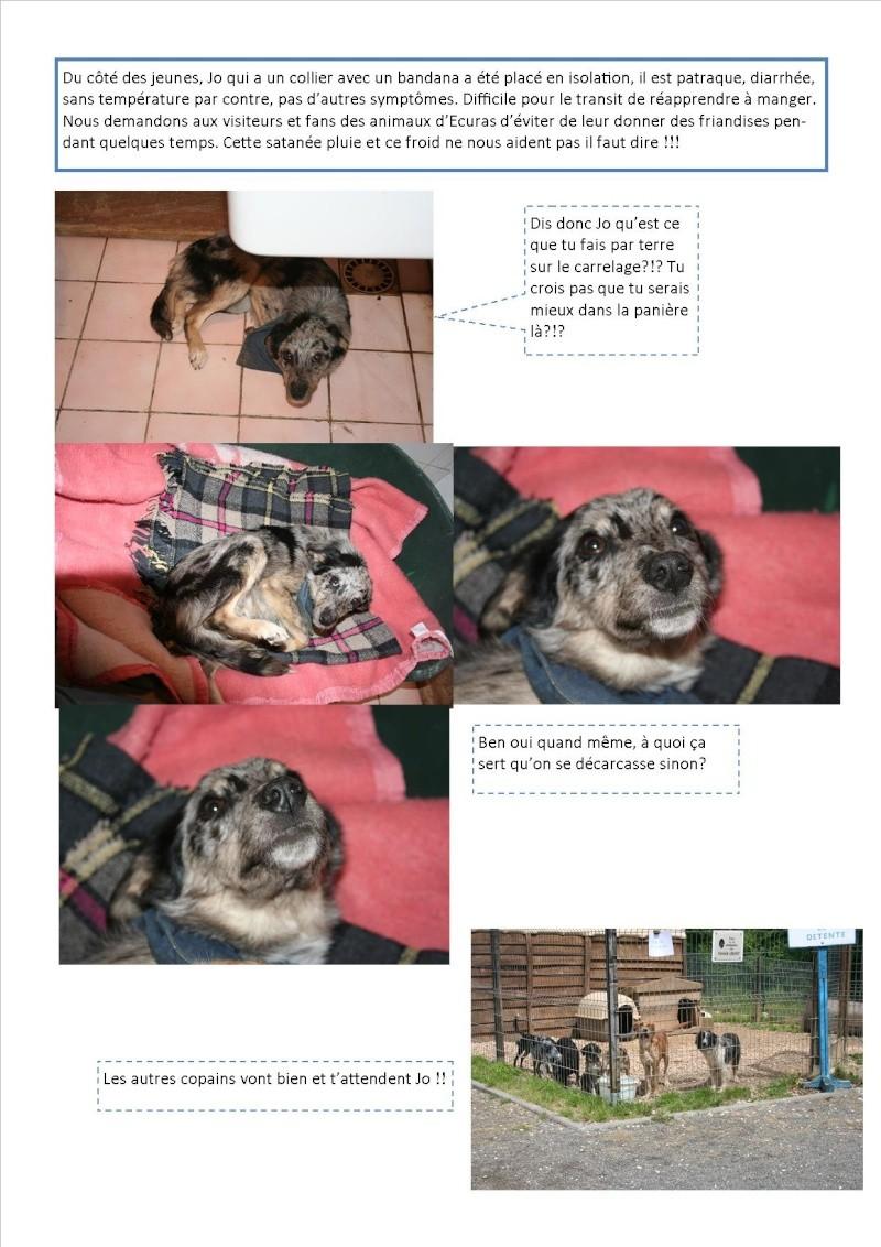 Nouvelles des animaux d'Ecuras du 290513 Nouvel33