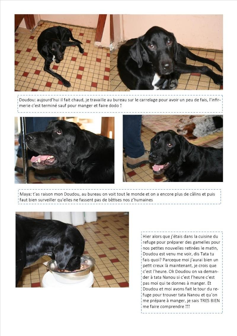 Nouvelles des animaux d'Ecuras du 060613 Nouvel58