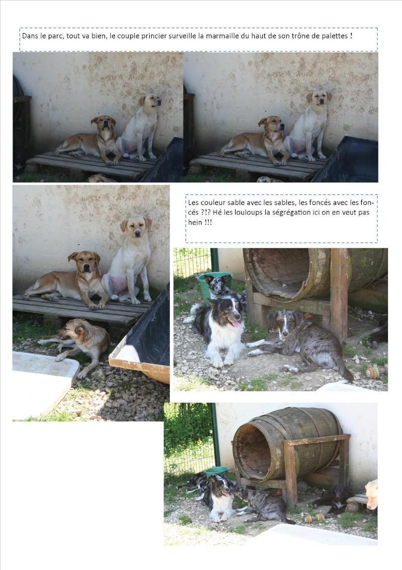 Nouvelles des animaux d'Ecuras du 060613 Nouvel59
