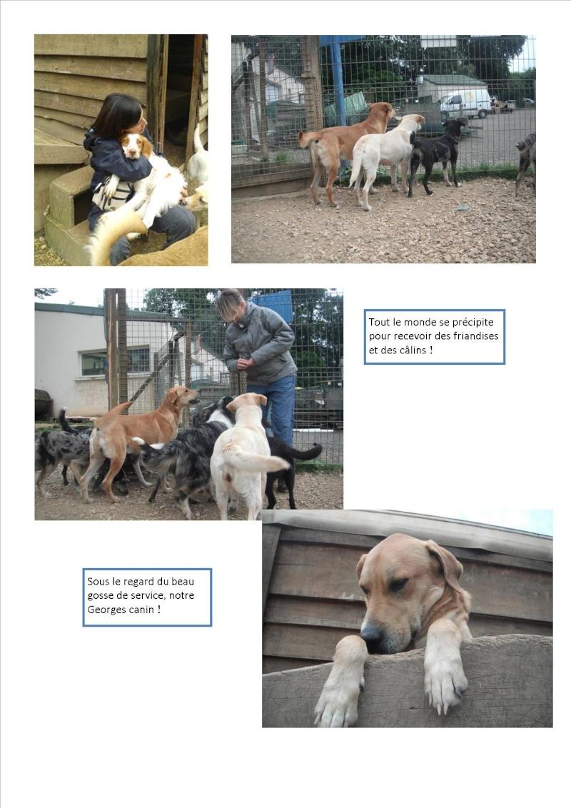 Nouvelles des animaux d'Ecuras du 10 06 13 Nouvel62