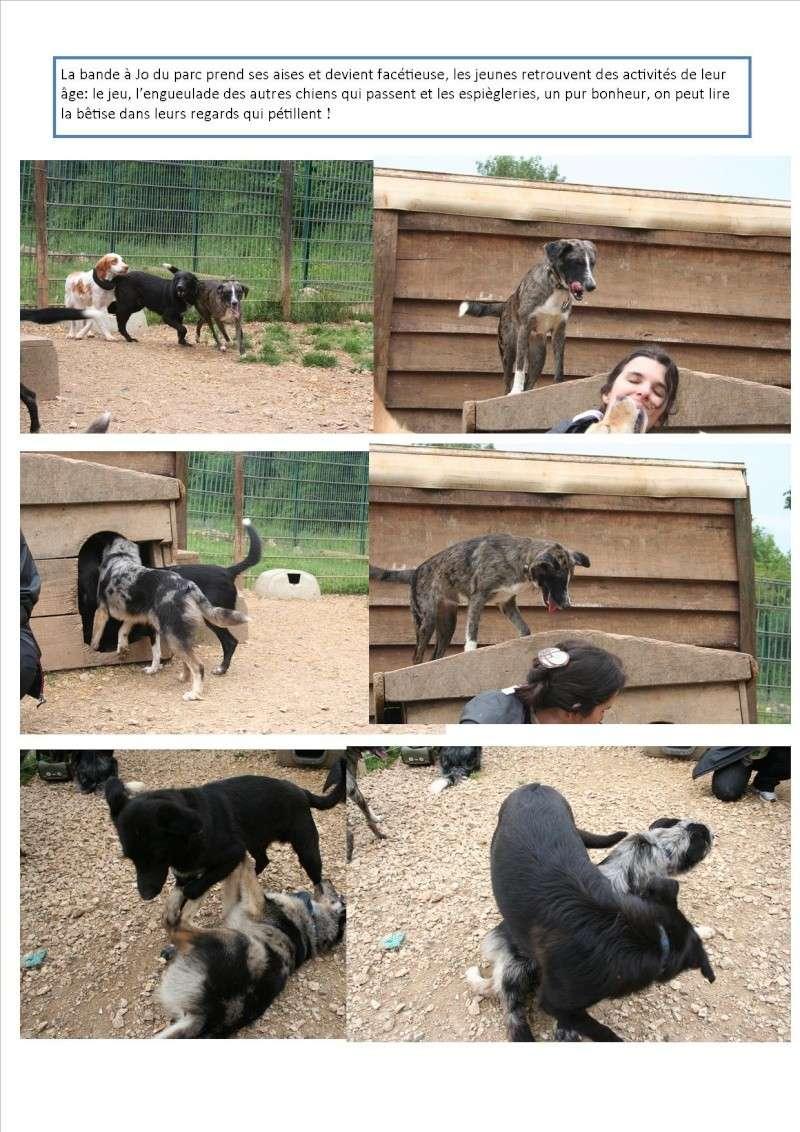 Nouvelles des animaux d'Ecuras du 10 06 13 Nouvel64