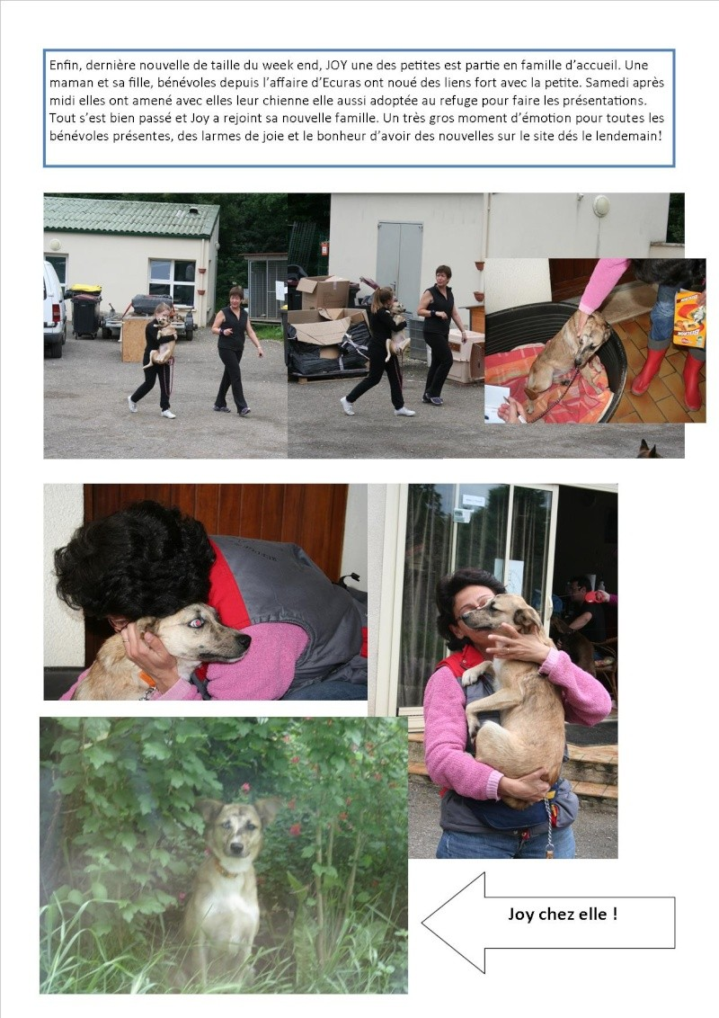 Nouvelles des animaux d'Ecuras du 10 06 13 Nouvel66