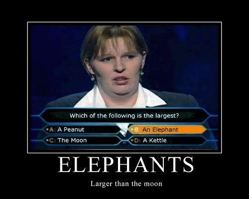 Funny Pics Image016