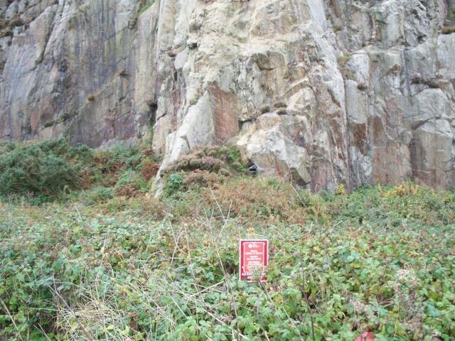 Porth Nannerch Quarry Mine 100_1544
