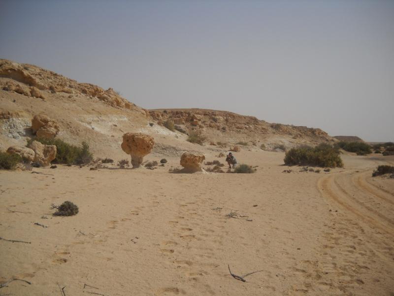 retour maroc avril 2013 Dscn2217