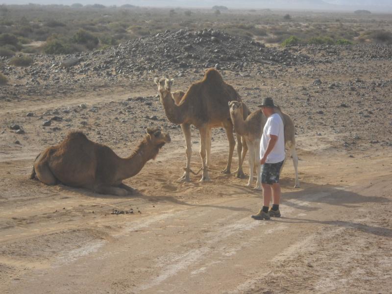 retour maroc avril 2013 Dscn2218