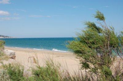 La plage de Drouot Plage_10