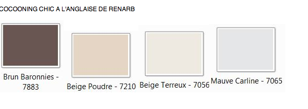 mon salon / salle a manger besoin conseil couleur / agenceme - Page 3 Image_20