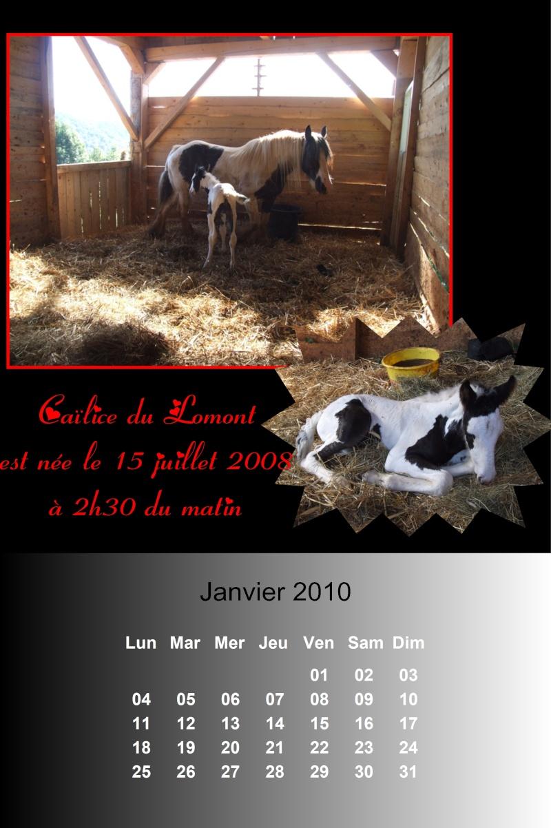 Créez votre calendrier 2010 - Page 2 2010_019