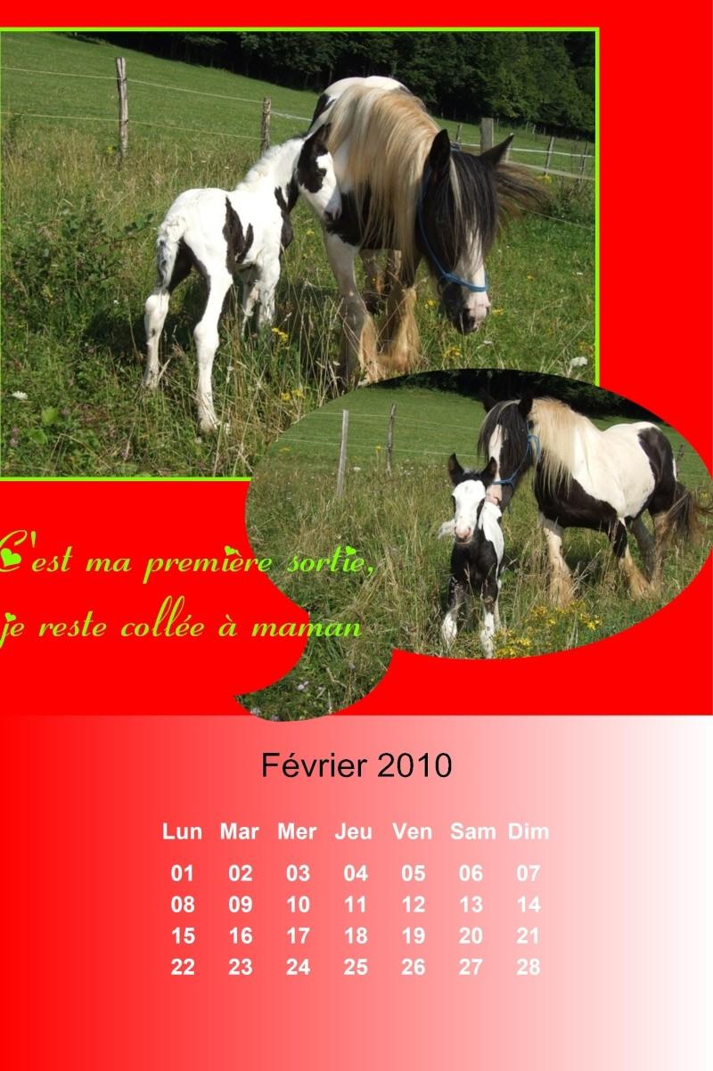 Créez votre calendrier 2010 - Page 2 2010_020