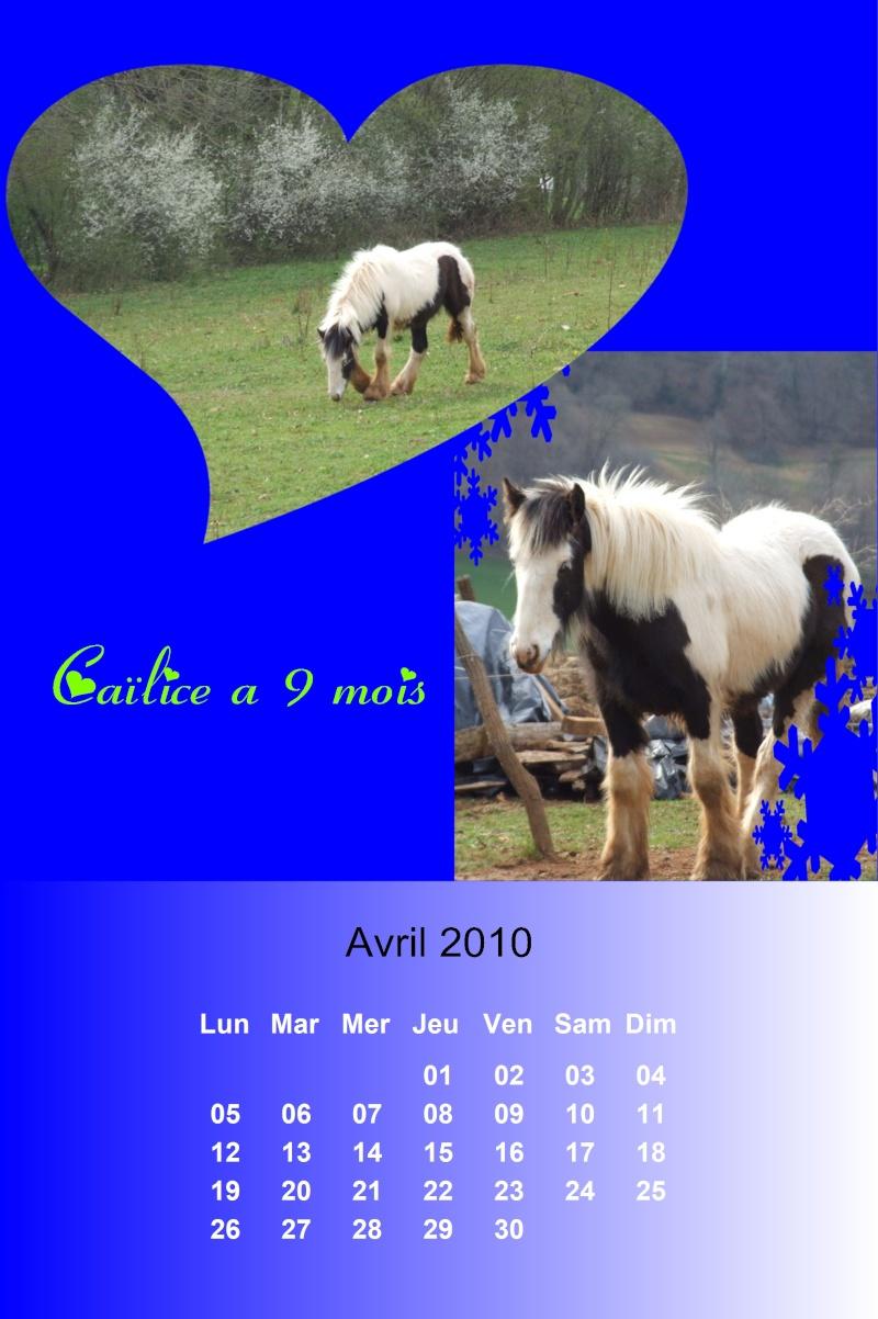 Créez votre calendrier 2010 - Page 2 2010_021