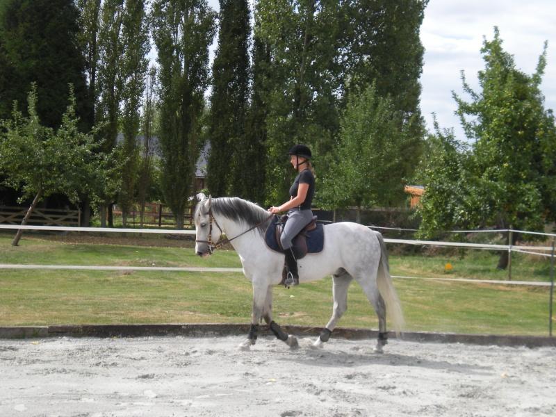 Une photo de vous et votre cheval - Page 4 Dscn1010