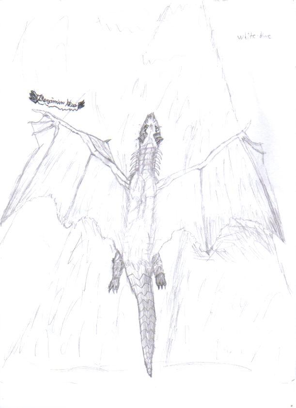 Dragon Art Awesom14