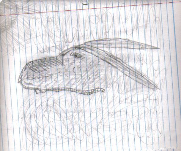 Dragon Art Head_i10
