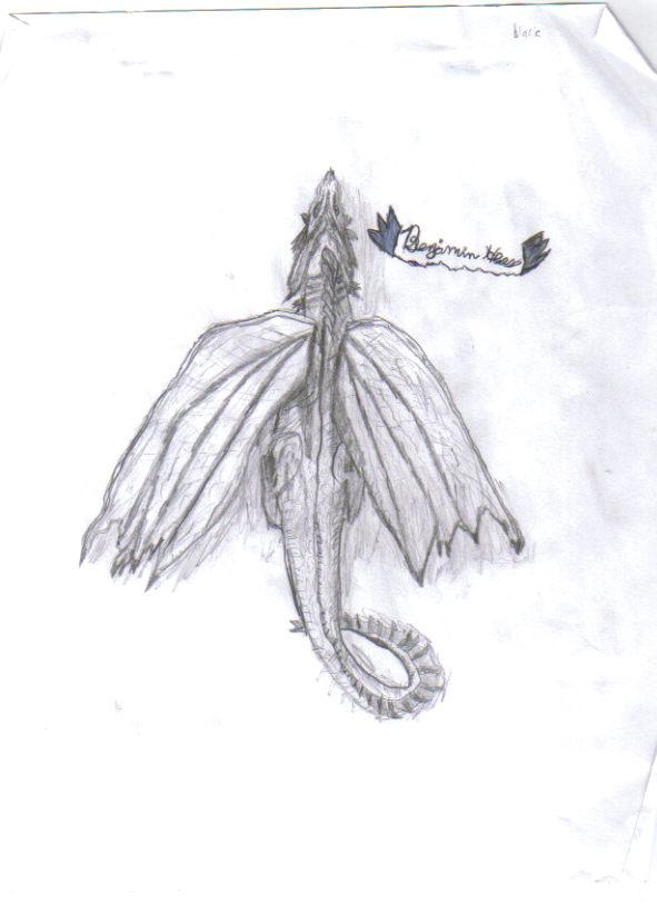 Dragon Art The_wa10