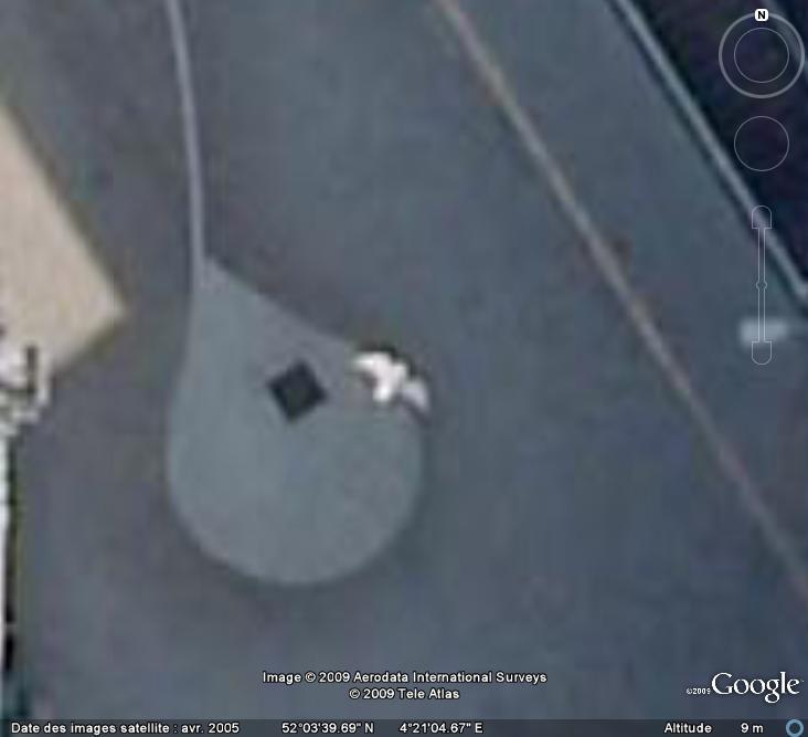 Oiseaux visibles sous Google Earth - Page 4 Mouett12