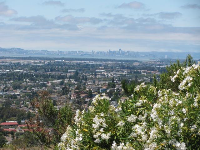 Neue Bilder von Kalifornien Img_0111