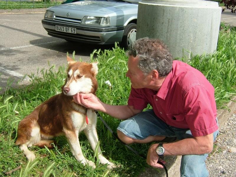 Nos loups grandissent, postez nous vos photos - Page 3 Dscf4510