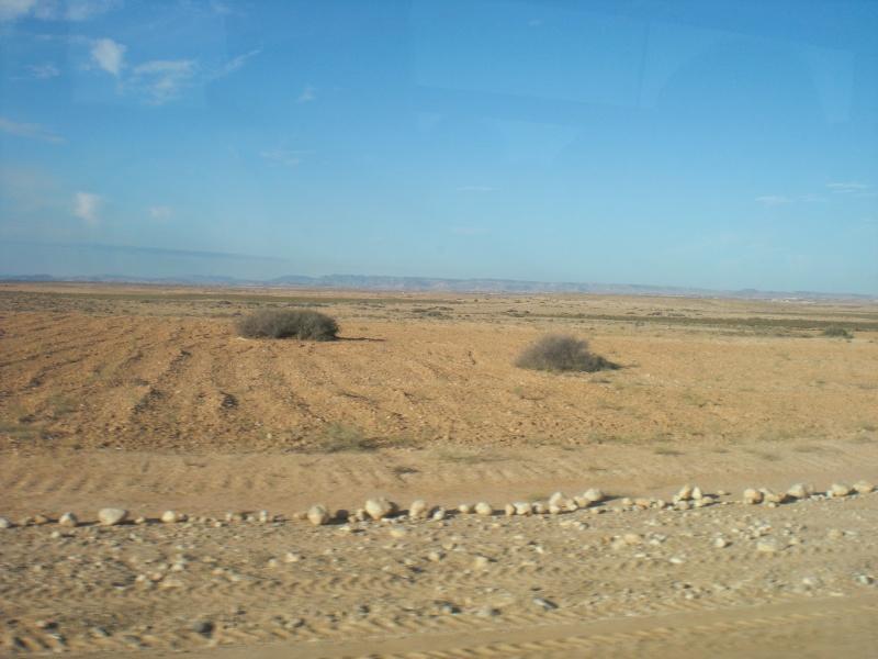 Quelques photos de mes vacances en Tunisie Cimg0510