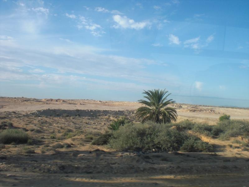 Quelques photos de mes vacances en Tunisie Cimg0512