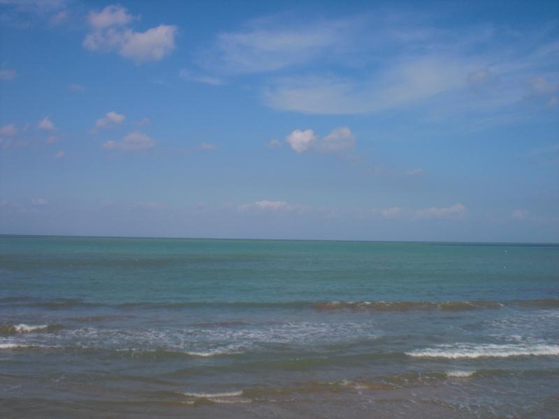Quelques photos de mes vacances en Tunisie Cimg0614