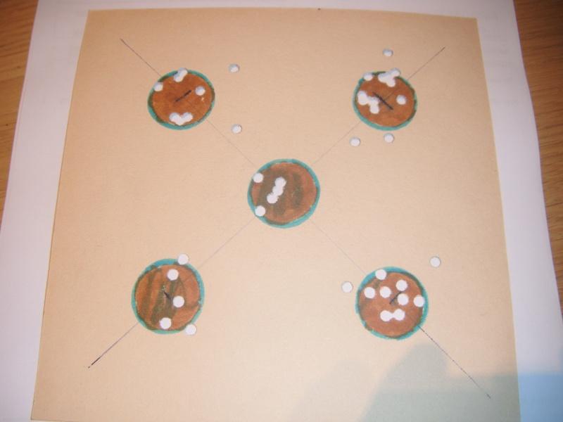 Carton à 10m debout sans appui visée ouverte : hw77K en 7.5 joules Dscf1410