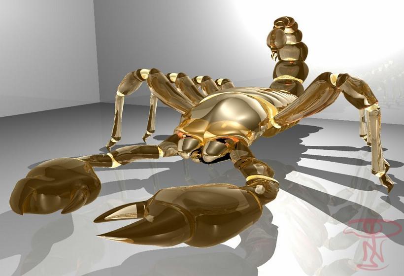 Bienvenue chez les golden scorpions