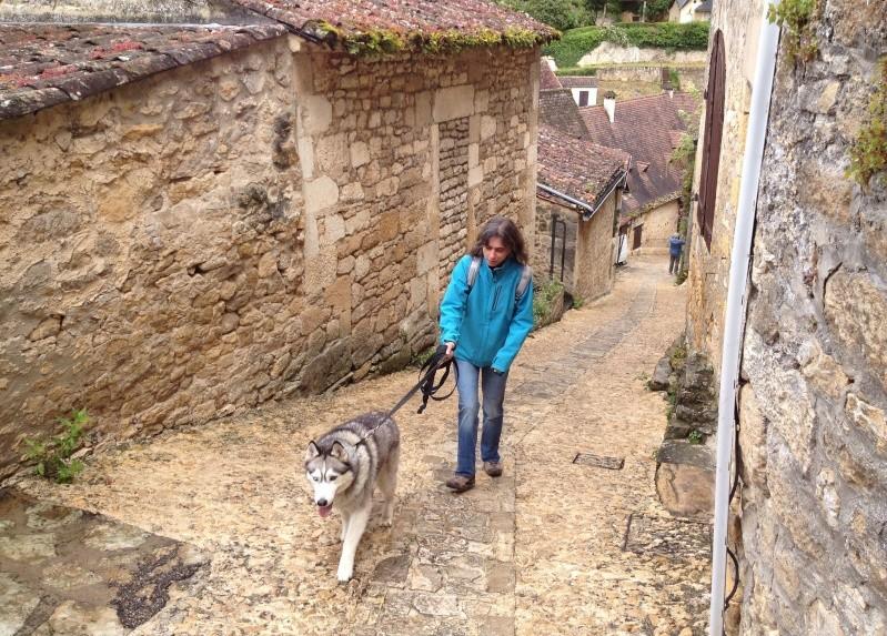 Escapade avec Baltik  en Dordogne dans le perigord noir Beynac14