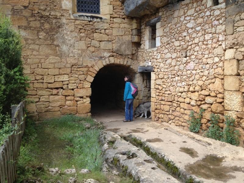 Escapade avec Baltik  en Dordogne dans le perigord noir Img_1311