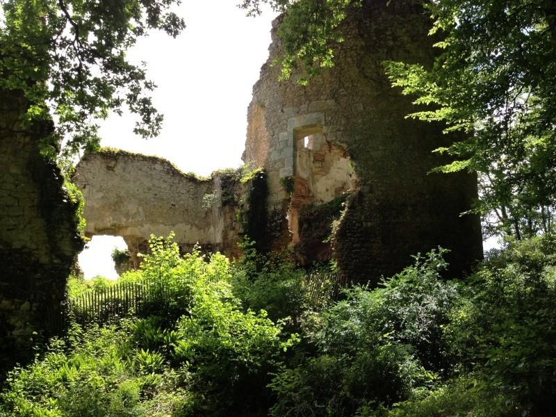 Escapade avec Baltik  en Dordogne dans le perigord noir Img_1312