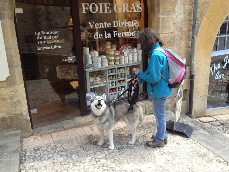 Escapade avec Baltik  en Dordogne dans le perigord noir Sarlat11