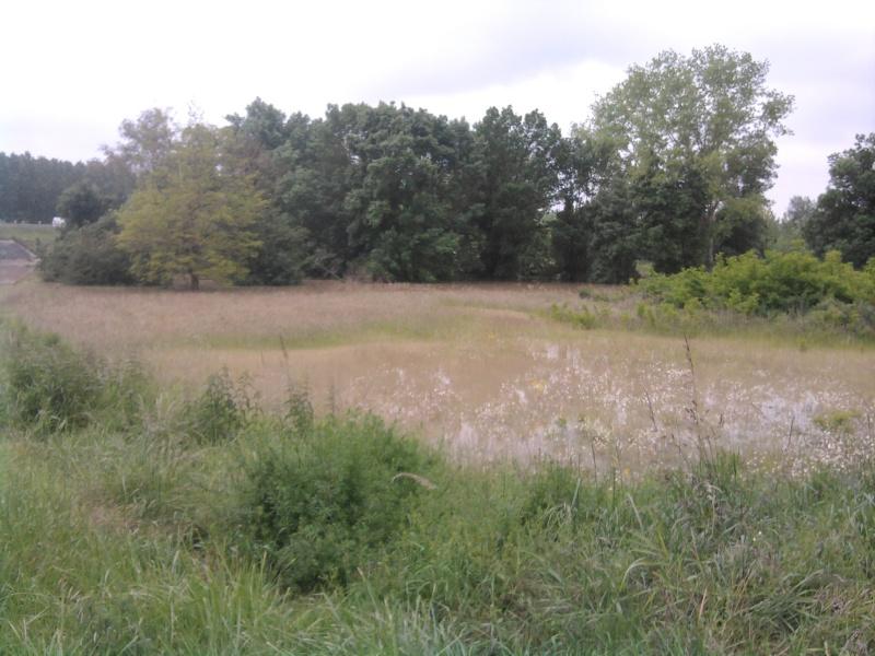 Alerte à la crue de la Garonne -  Inondation Photo216