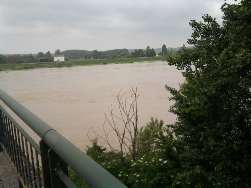 Alerte à la crue de la Garonne -  Inondation Photo217