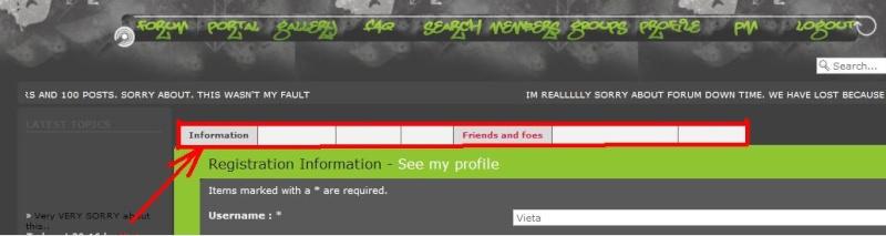 Theme problem ( in profile navigator bar) Untitl10