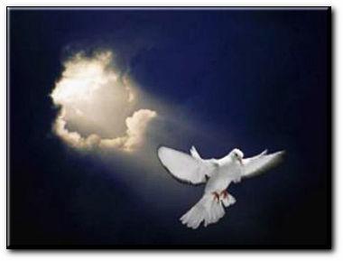 HOLY BIBLE : Hauv Paus ( piav txog Tswv Ntuj tsim lub ntuj tsim lub teb. 1 : 1 - 31 + 2 : 1 - 4. ) Esprit10