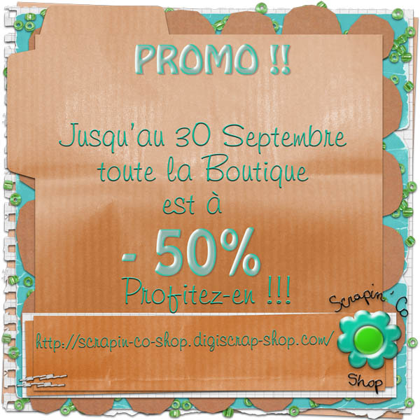 Promo chez Scrapin'Co shop Promo610