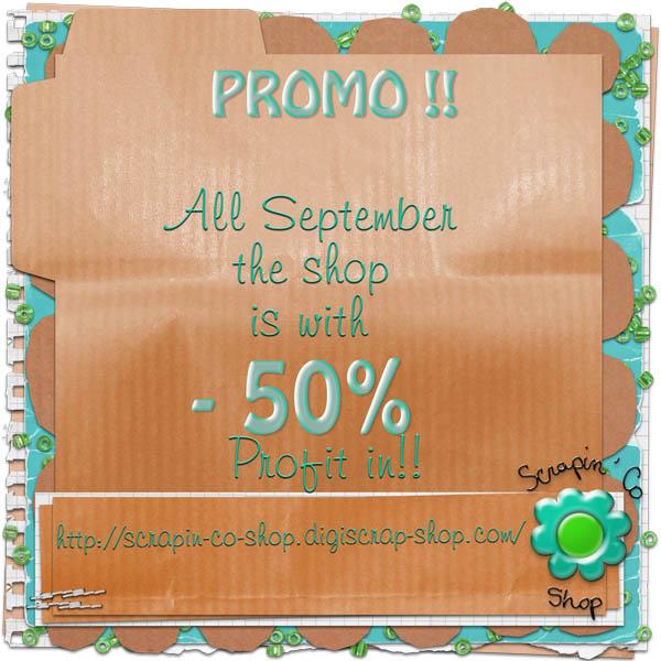 Promo chez Scrapin'Co shop Promo_10
